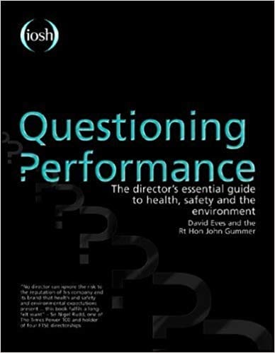 Questioning Performance The Directors Essential Guide To Health, Safety And The Environment cover